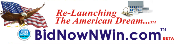 BidNowNWin.com - Where You Will Find The Best & Most Innovative Real Estate Auctions In The Internet